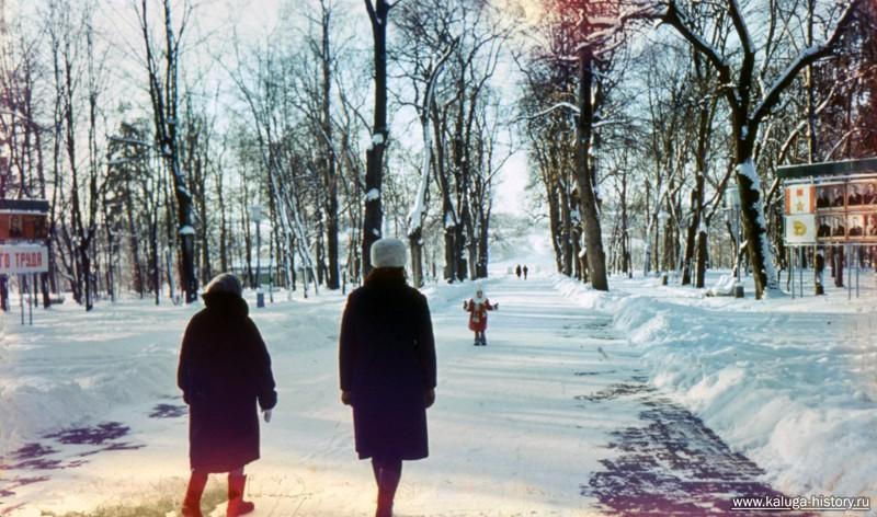 цветная калуга, зимний парк, центральная аллея